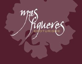 logowebmasfigueres.jpg