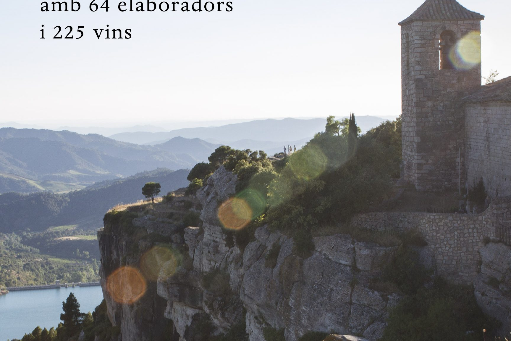 Vinologue Montsant, review on the website of Jancis Robinson