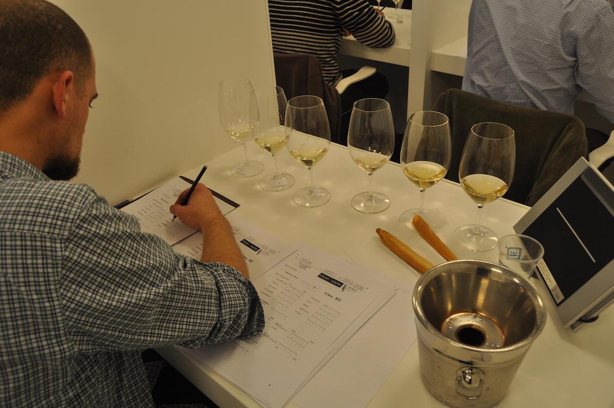 La DO Montsant escull el dilluns 27 els nous vins institucionals